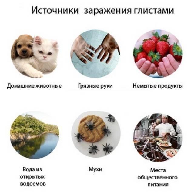 Паразиты в человеческом организме – эффективное лечение