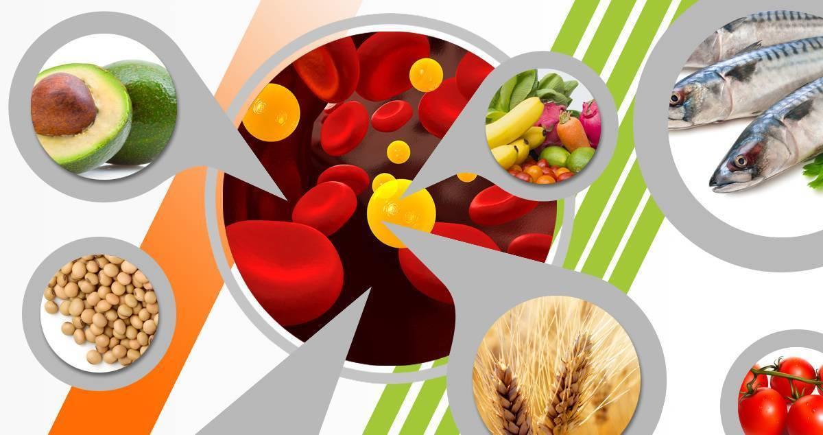 Что такое холестерин: как определить и снизить его концентрацию в крови