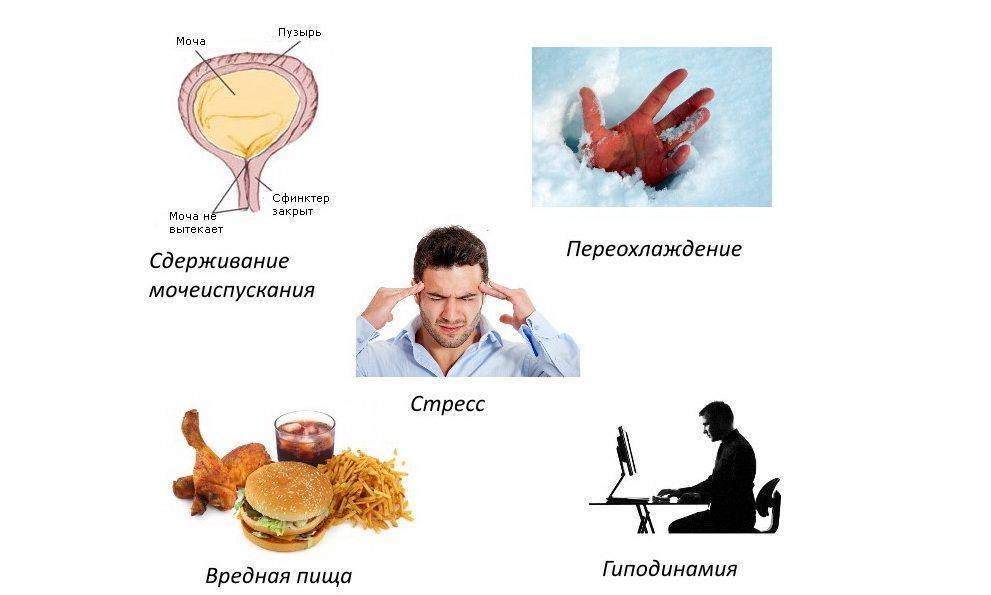 Цистит у мужчин и его симптомы