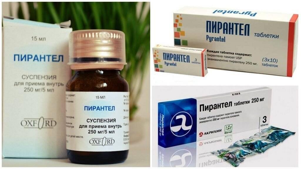 Методы лечения аскаридоза у взрослых
