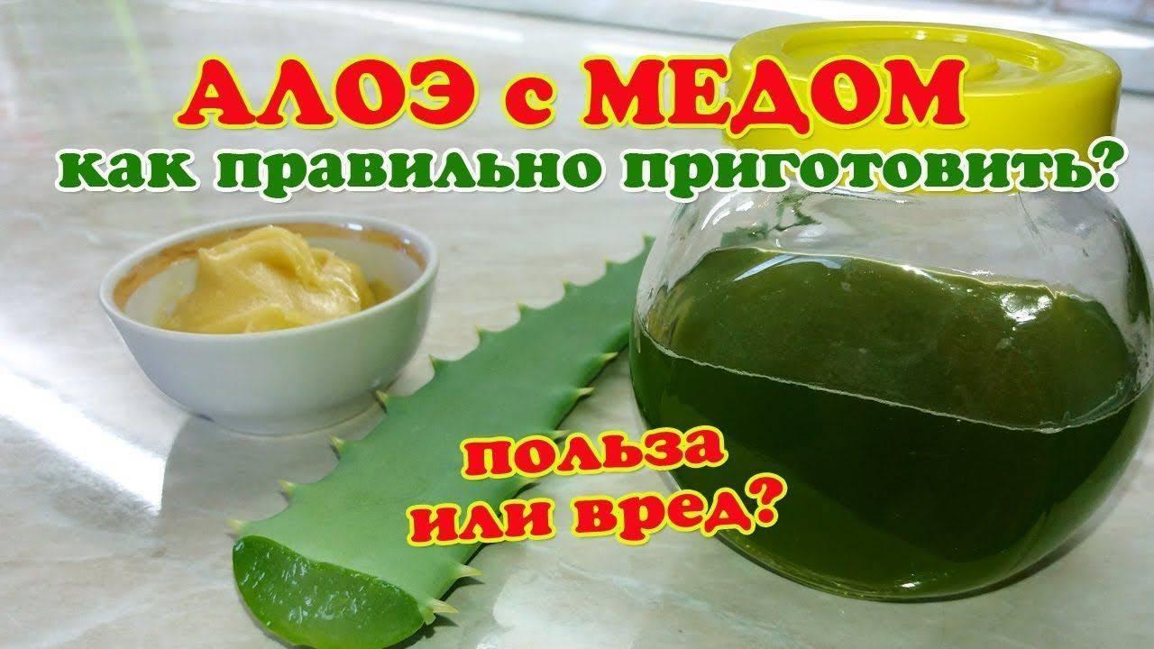 алое с медом от кашля