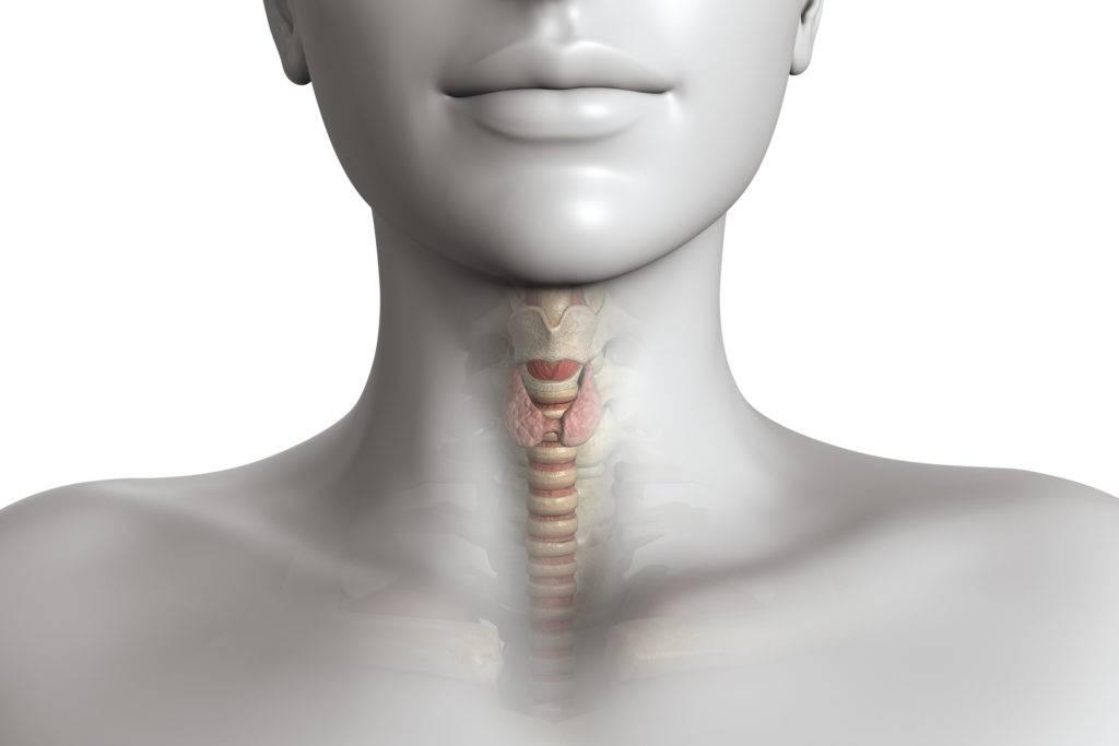 Щитовидная железа симптомы заболевания у мужчин, фото | pro shchitovidku