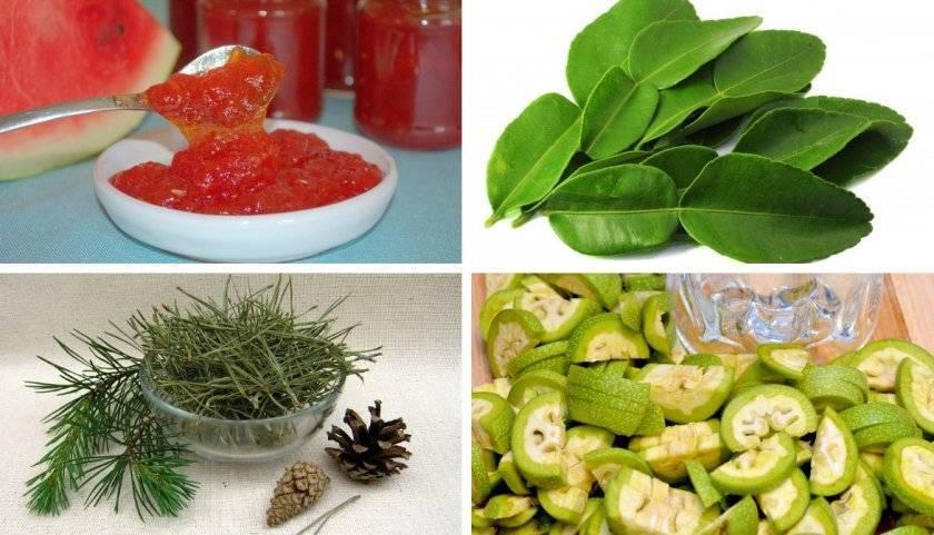 Зеленые грецкие орехи лечение щитовидной железы