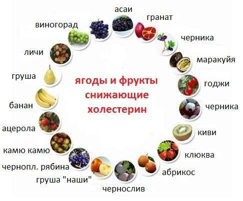 при повышенном холестерине можно есть халву