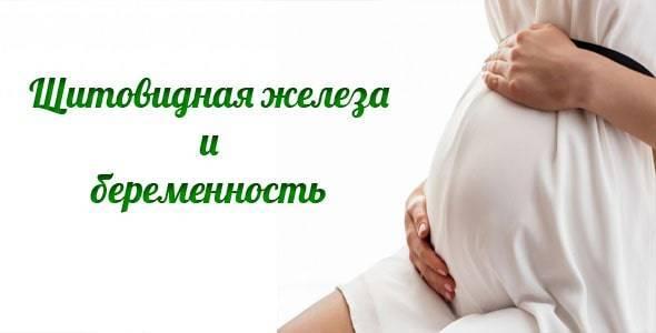 Заболевания щитовидной железы и зачатие