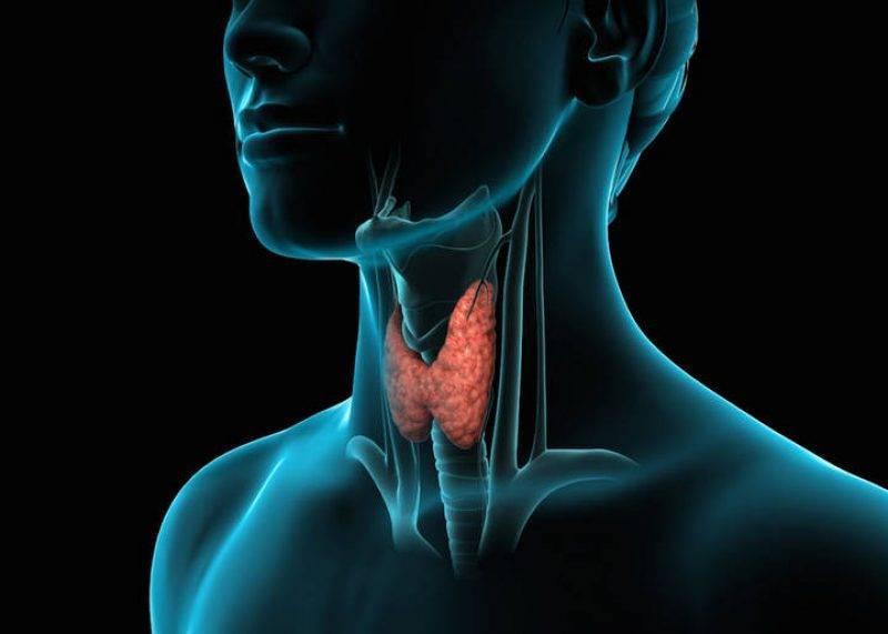 рак щитовидной