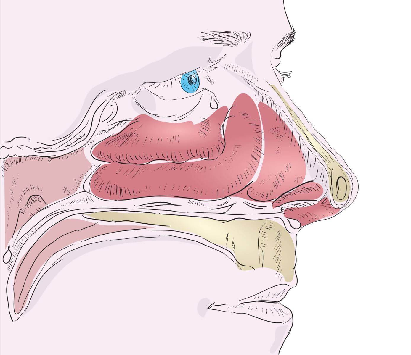 как снять отечность носа при насморке