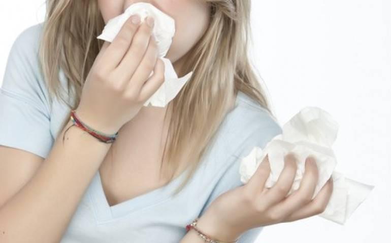 Как отличить аллергический насморк от простудного? как возникает аллергический ринит