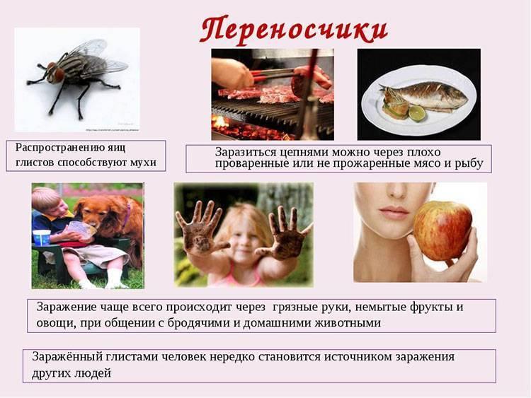 Профилактика глистов у ребенка. препараты, народные средства