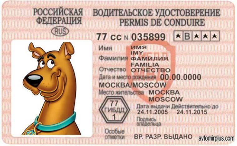 Проверка зрения для получения водительских прав