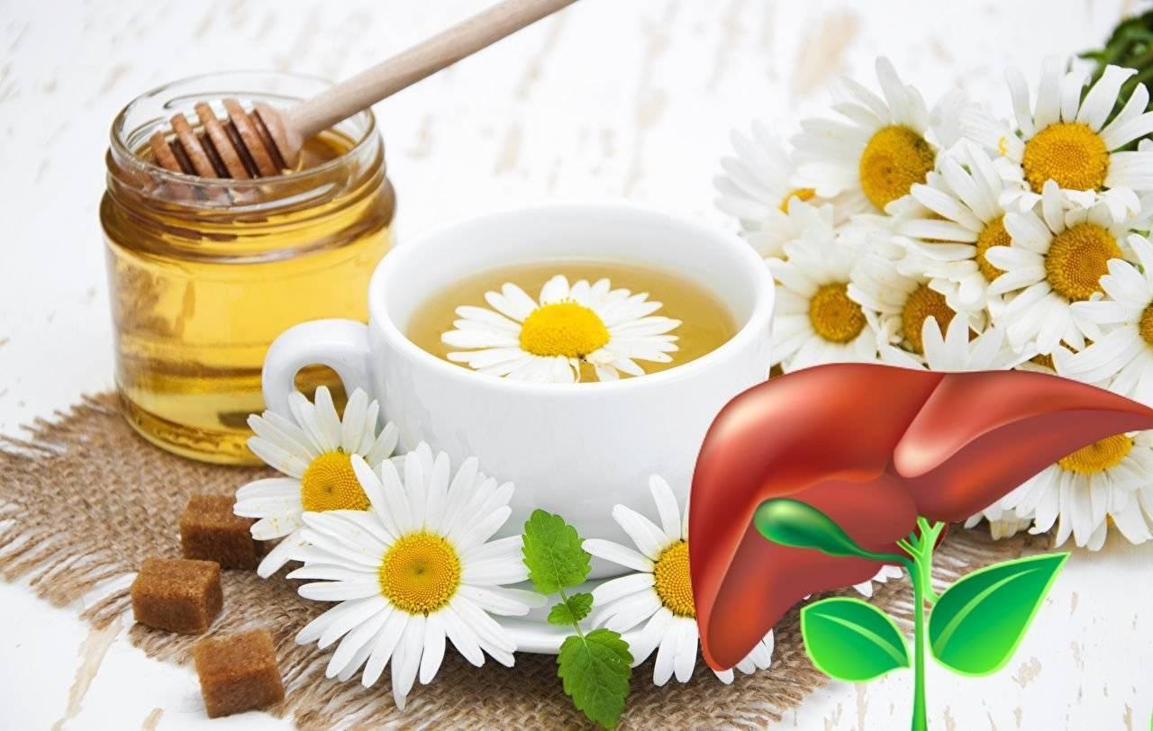 Может ли мед быть полезен для печени?