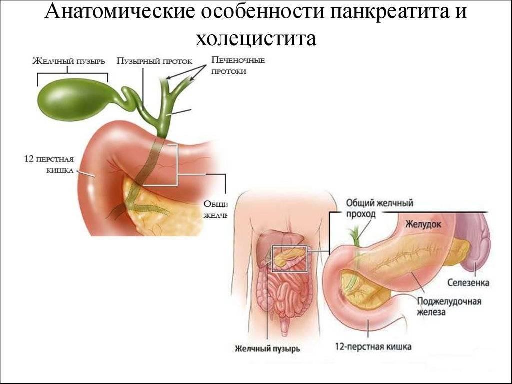 симптомы холецистита и панкреатита