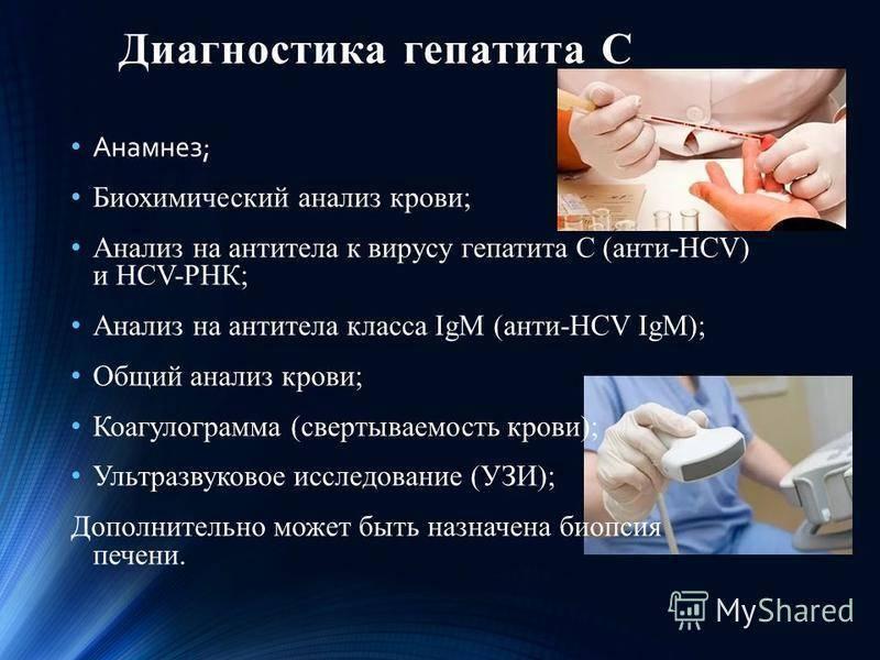 Вирусные гепатиты в и с: пути передачи, симптомы, диагностика, лечение, профилактика
