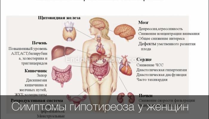 нарушение щитовидной железы у женщин