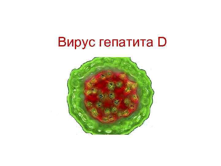 гепатит д симптомы