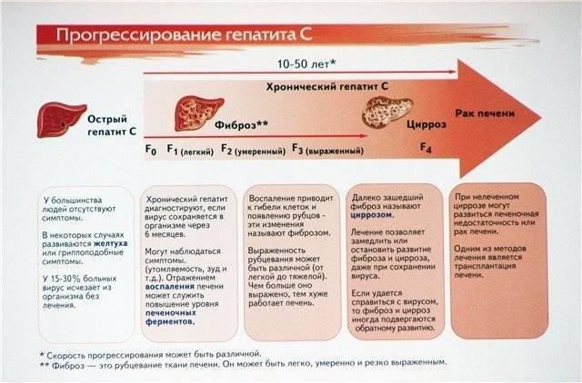 Гепатит с: лечение народными средствами помогает? отзывы