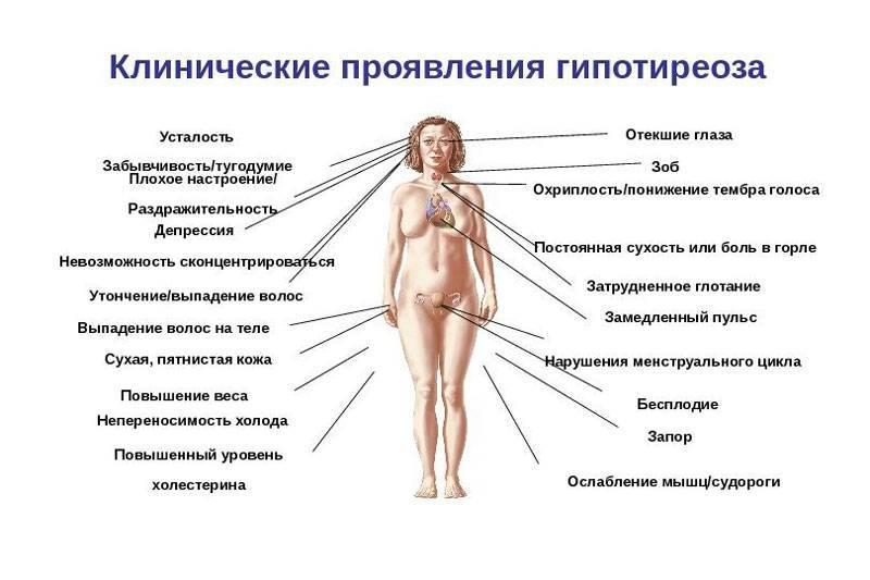 болезни щитовидной железы у женщин и последствия
