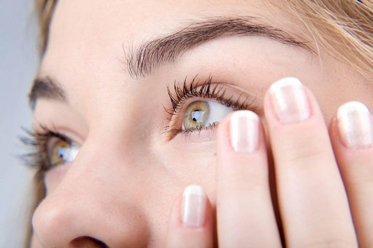 Как избавиться от слезных дорожек у мальтезе. несколько советов по уходу за шерстью вокруг глаз мальтезе. особенности строения глаз