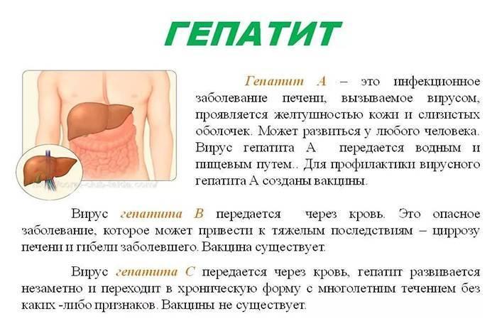 Пути передачи вирусного гепатита с (ц)