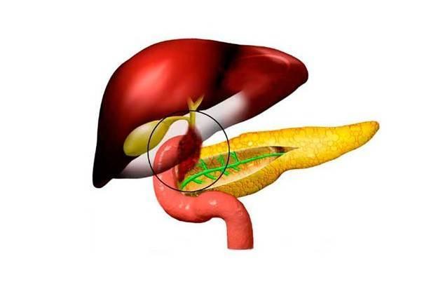 дисфункция желчного пузыря симптомы