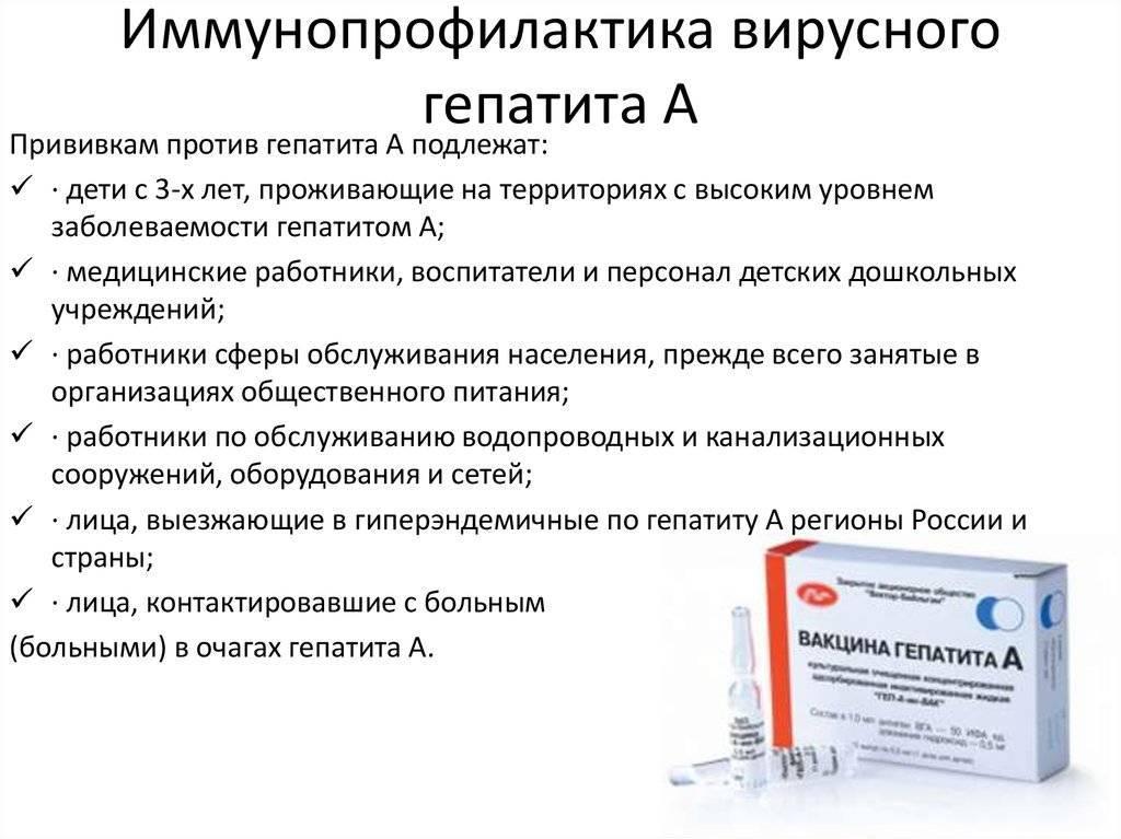 прививка от гепатита а взрослым
