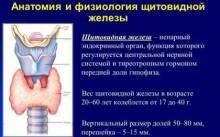 Жизнь без щитовидной железы