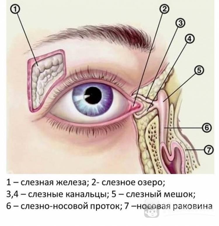 При моргании болит под глазом