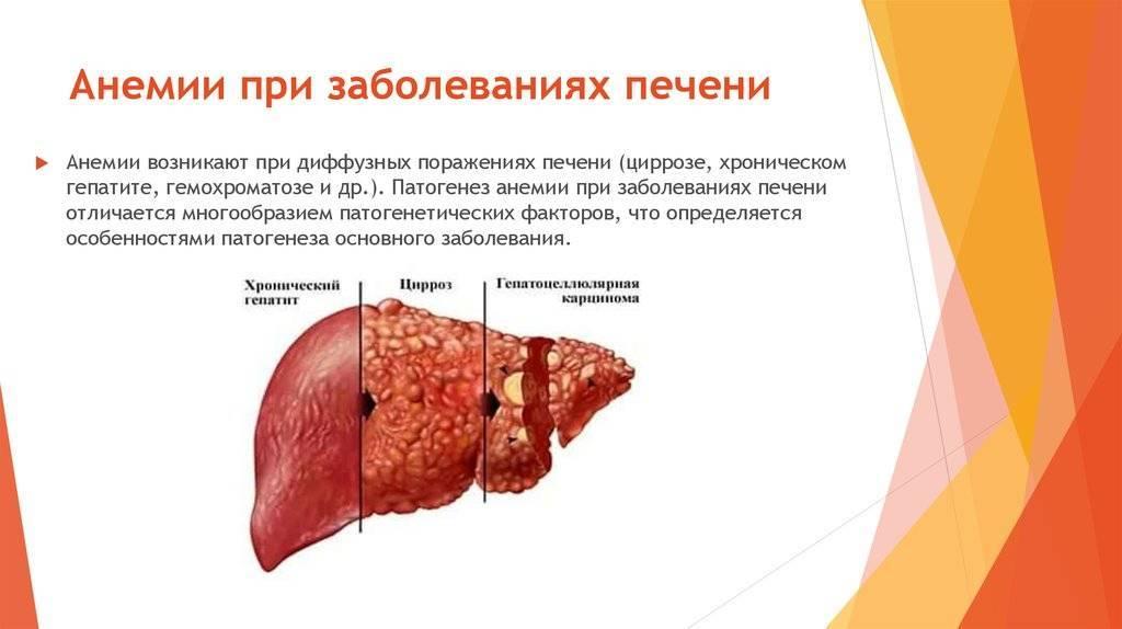 Температура и мышцы болят печень