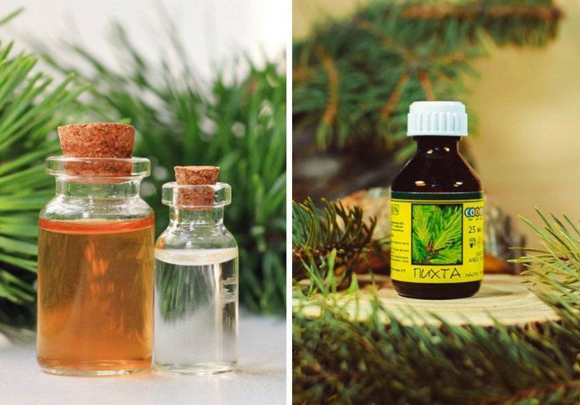 Неоправданно забытые лечебные свойства пихтового масла