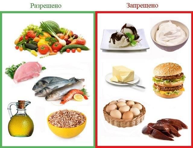 растительные масла при атеросклерозе