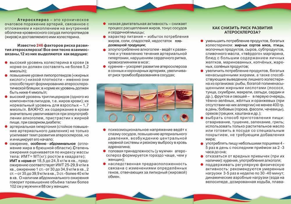 меры профилактики атеросклероза
