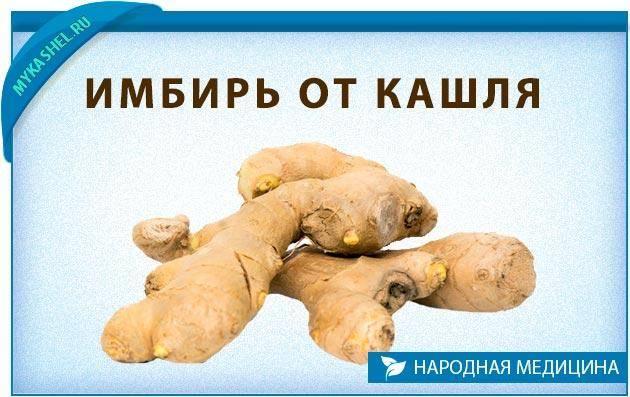 Рецепты приготовления имбиря от кашля и простуды для взрослых и детей