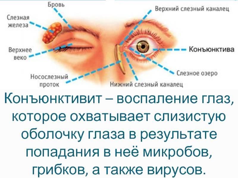 гигиена органа зрения