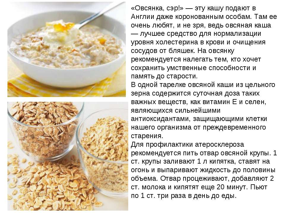 геркулес и холестерин