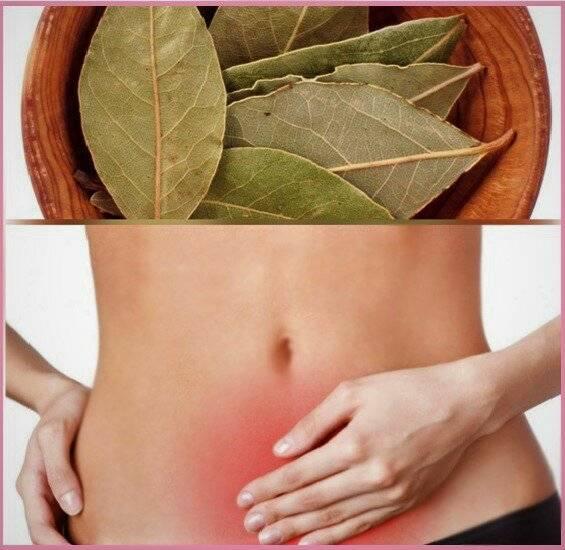 Народные рецепты от цистита у женщин лавровым листом