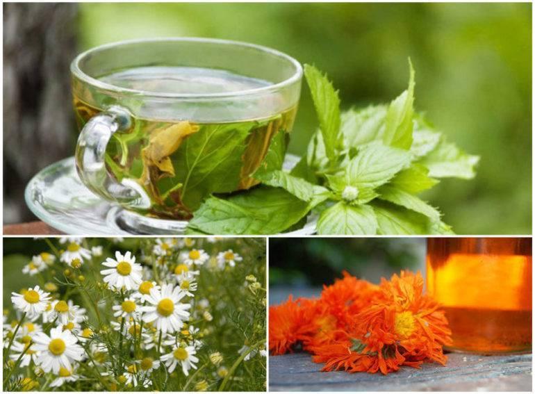 Природные антисептики при лечении болезней горла. травы для полоскания горла — какими свойствами обладают и как применять