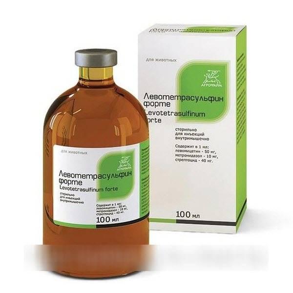 Антибиотики при мастите у женщин и кормящих мам: лечение, советы