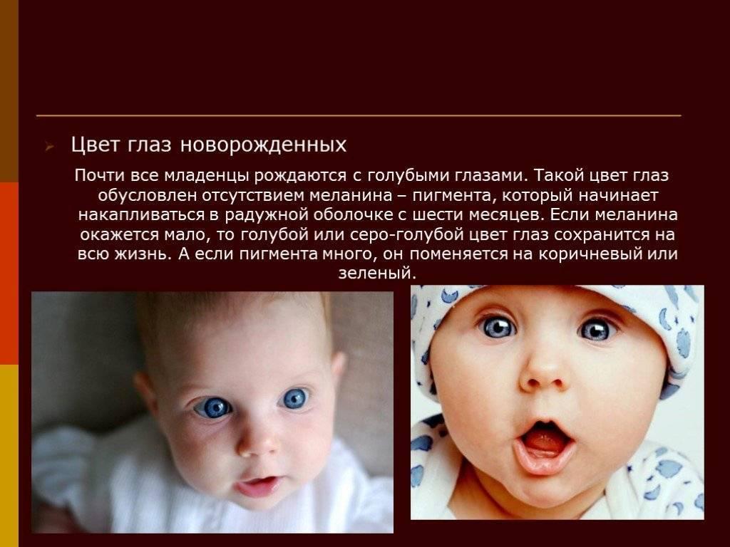 Зрение у новорожденных: этапы развития, 1 месяц жизни, как фокусируется и развивается