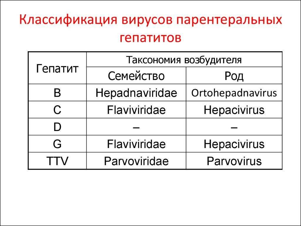 Пути передачи вирусного гепатита в