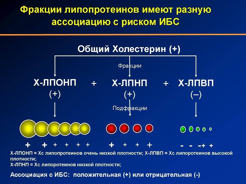 Лпнп — что это такое в биохимическом анализе крови, причины повышения