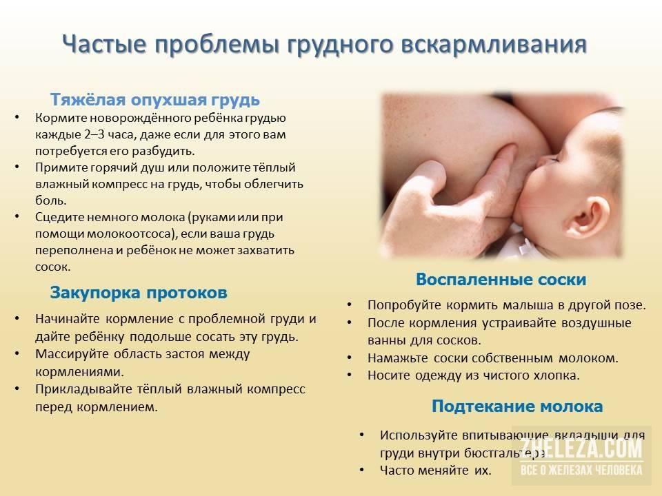 Как стимулировать лактацию после родов?