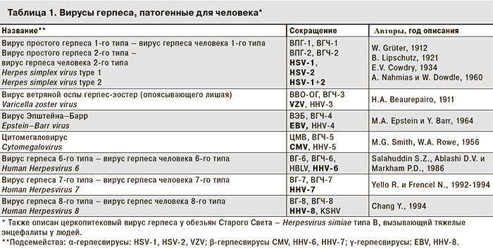 Перечень анализов на генитальный герпес и их расшифровка