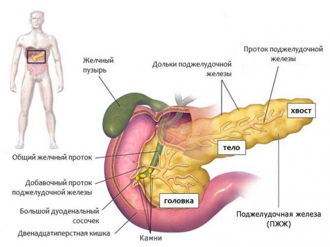 Панкреатит холецистит симптомы и лечение дома диета