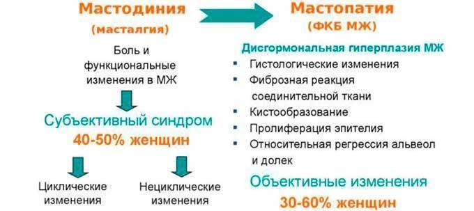 циклическая мастодиния