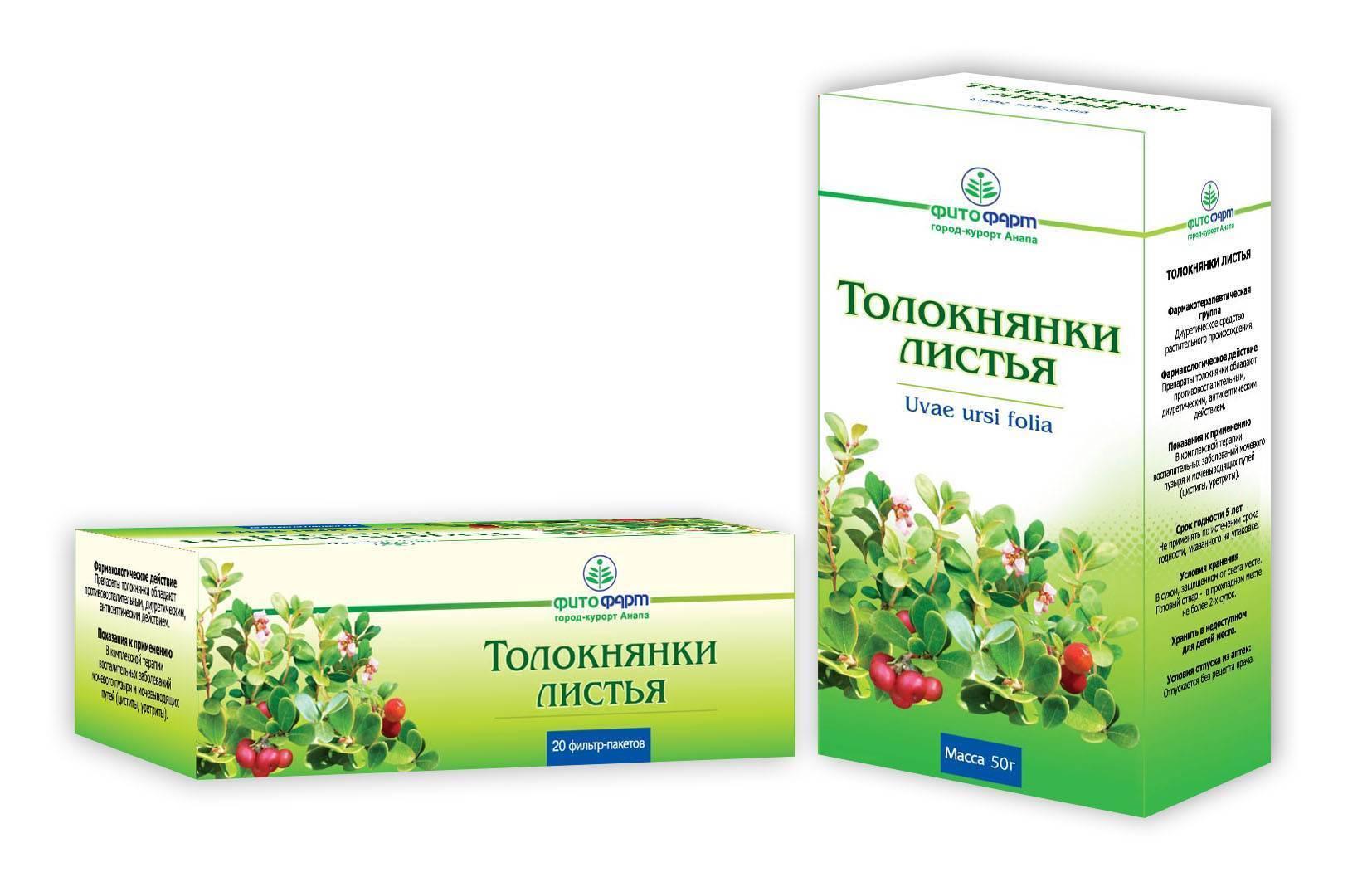 Отвар и настойка листьев толокнянки при цистите у женщин, лечение и дозировка
