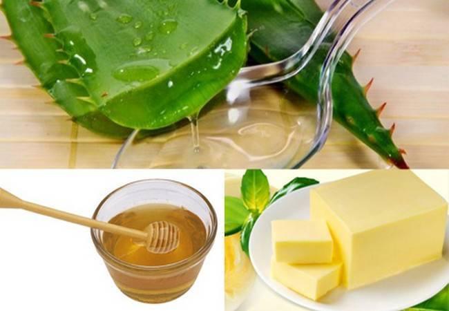 Можно ли лечить кашель с помощью алоэ? рецепты целебных средств с мёдом и другими компонентами