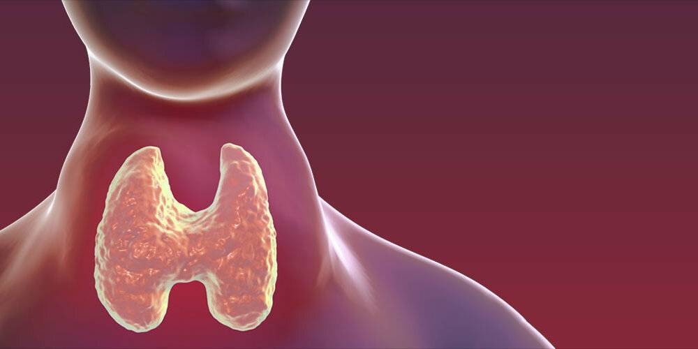 Аутоиммунный тиреоидит щитовидной железы, лечение народными средствами