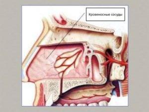таблетки от кровотечения из носа