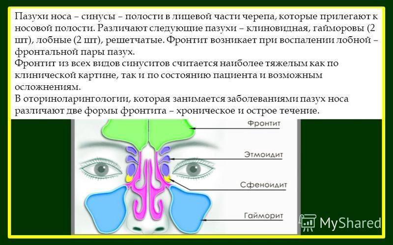 Острые и хронические заболевания носа и его придаточных пазух