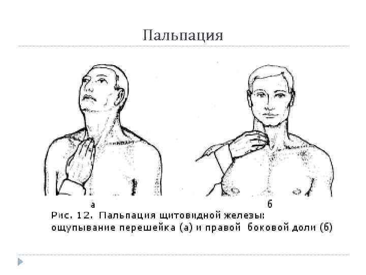 4 простых способа, как проверить щитовидную железу самостоятельно в домашних условиях